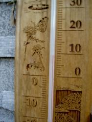 もう 春なのでしょうか?_f0114346_1819916.jpg