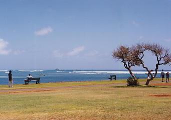 ハワイの風景 (4) ハワイ的、あまりにハワイ的な風景_c0011649_1295737.jpg