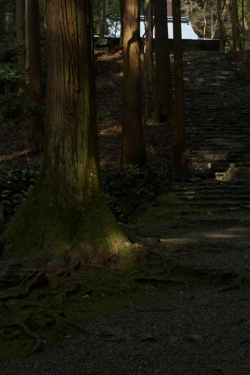 京都 高尾 <高山寺> 雪景色 2 かな_f0021869_949353.jpg