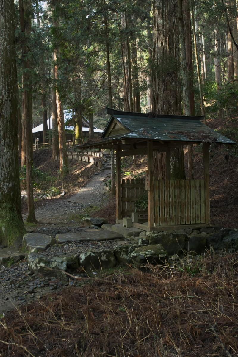 京都 高尾 <高山寺> 雪景色 2 かな_f0021869_9521785.jpg