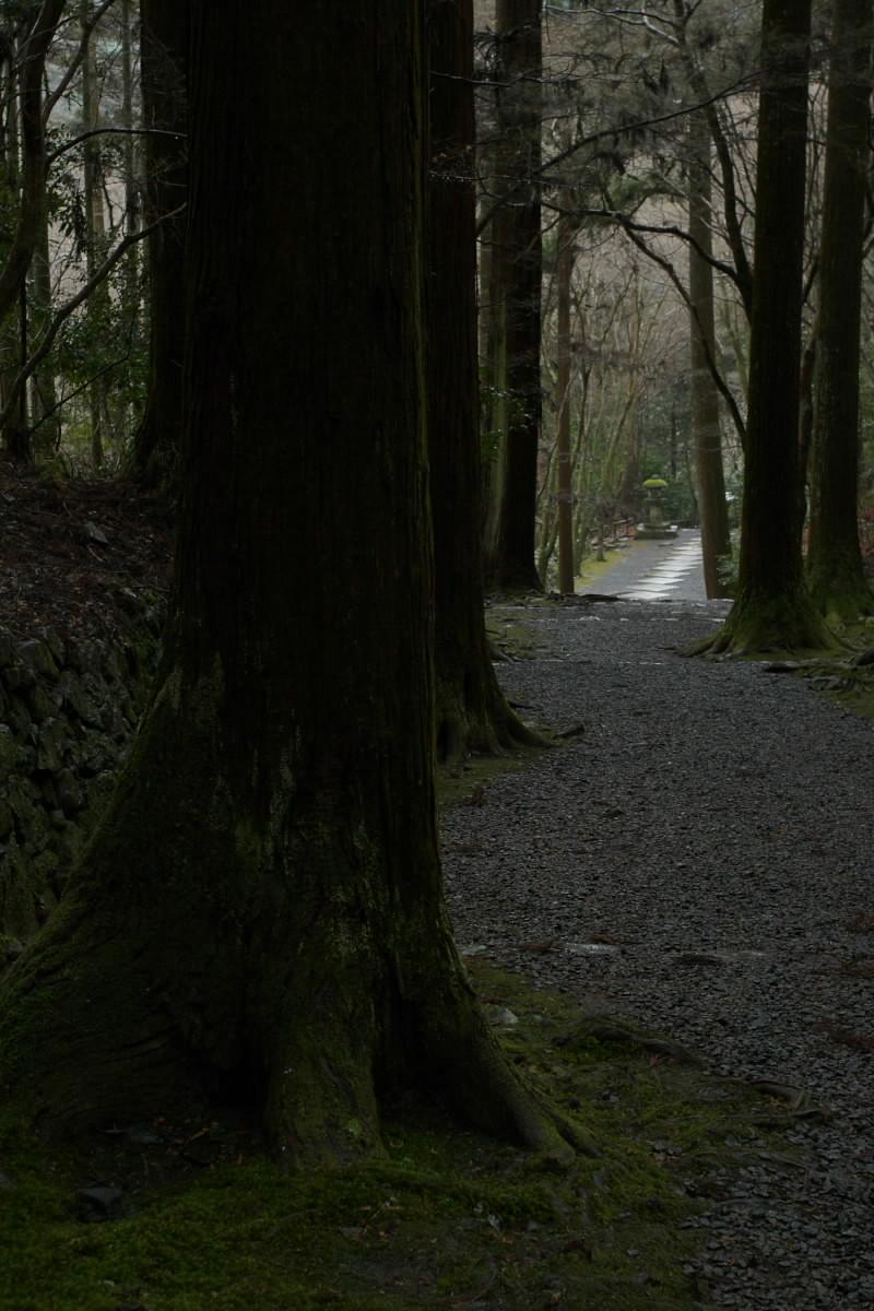 京都 高尾 <高山寺> 雪景色 2 かな_f0021869_9535481.jpg
