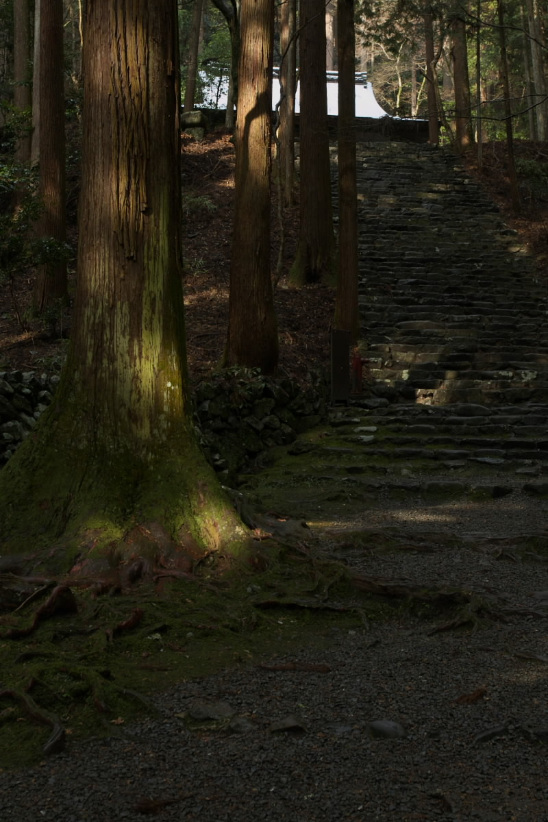 京都 高尾 <高山寺> 雪景色 2 かな_f0021869_9543639.jpg