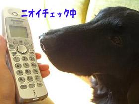 d0043478_23405573.jpg