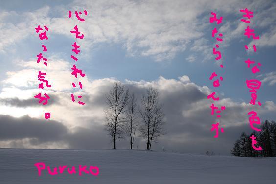f0116384_15335395.jpg