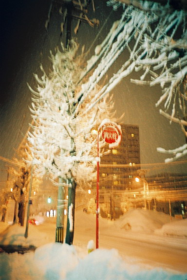 雪の夜も佇む者たち_f0033205_23435981.jpg