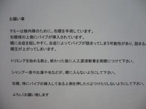 f0005727_2039646.jpg
