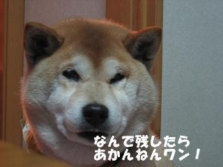間食オバサン_c0049950_13251556.jpg