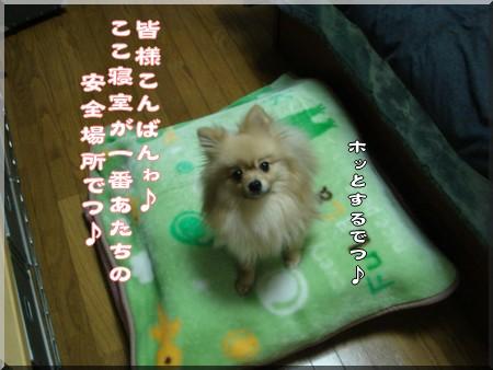b0078073_17155436.jpg