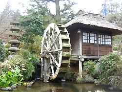 箱根 富士屋ホテル_d0037951_2040432.jpg