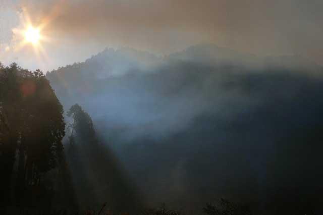 霧の朝_e0024958_1741276.jpg
