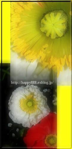 d0019770_2233876.jpg