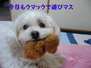 f0005727_16341660.jpg