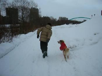 moe父散歩へ_c0029629_950090.jpg