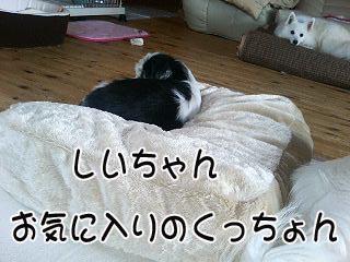 c0105157_19384136.jpg