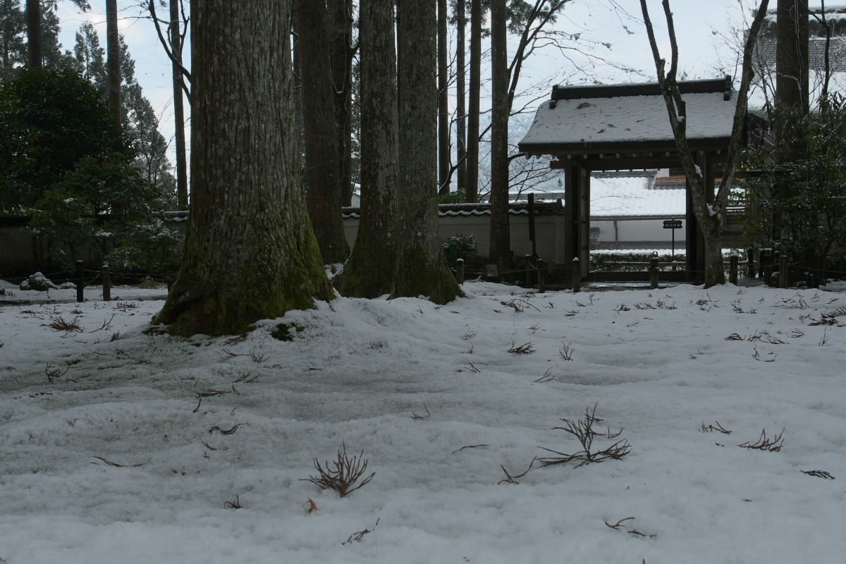 京都 大原 <三千院> 雪景色 16_f0021869_23182081.jpg