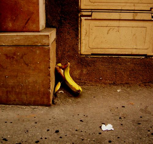 Banana on the left bank_f0074803_615307.jpg