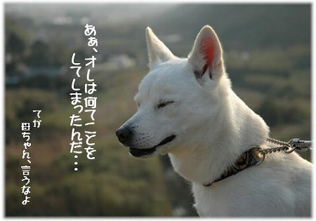 a0047325_12045.jpg