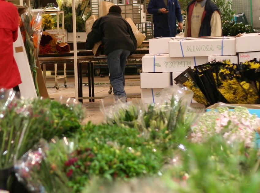 パリ 2007年冬_a0042928_234757.jpg