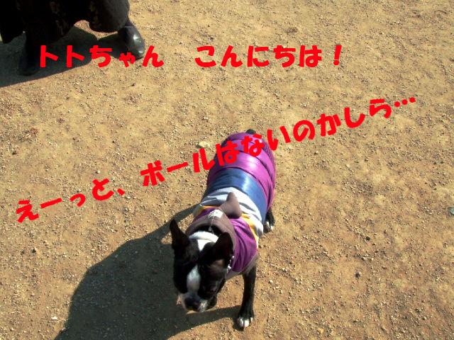 f0059334_11212296.jpg