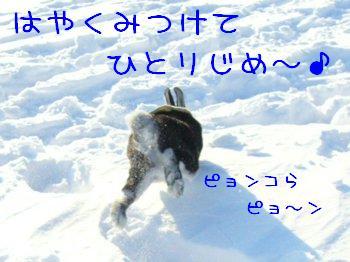 b0081503_1261340.jpg