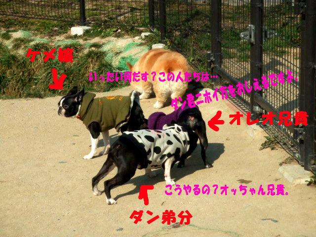 f0059334_10234229.jpg