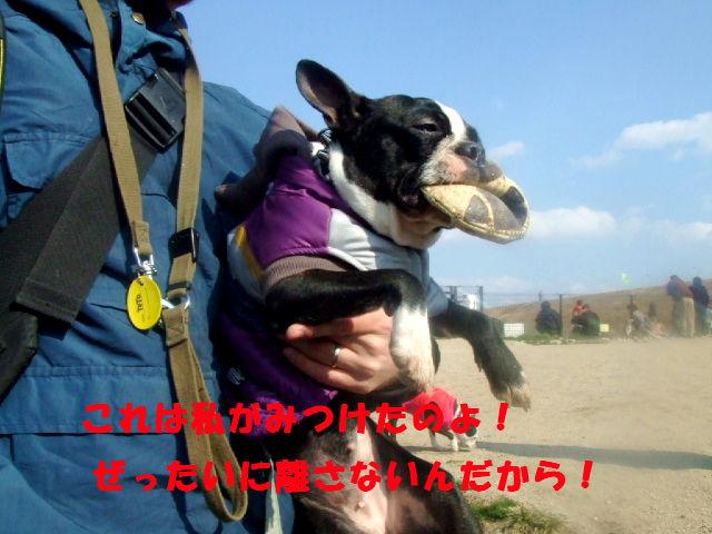 f0059334_1028056.jpg