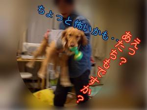b0015963_10215145.jpg