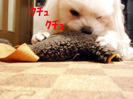 b0060071_022329.jpg
