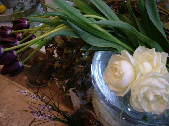 オークリーフ(バレンタインに贈る花)_f0049672_13345013.jpg
