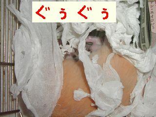 b0016983_12205147.jpg