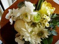 小さな春の贈り物_d0104091_12485263.jpg