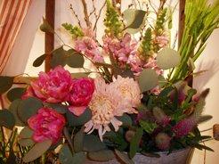 春色の!_d0104091_13132237.jpg
