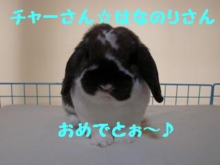 b0109692_10243682.jpg