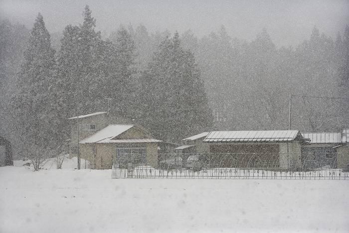 雪国_b0074098_935561.jpg