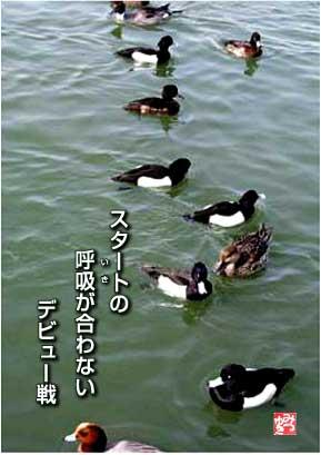 b0092707_651977.jpg