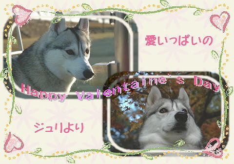 a0047325_0192068.jpg
