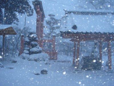 猛吹雪_c0111229_1724148.jpg