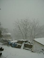 雨のち吹雪_f0114346_12331342.jpg