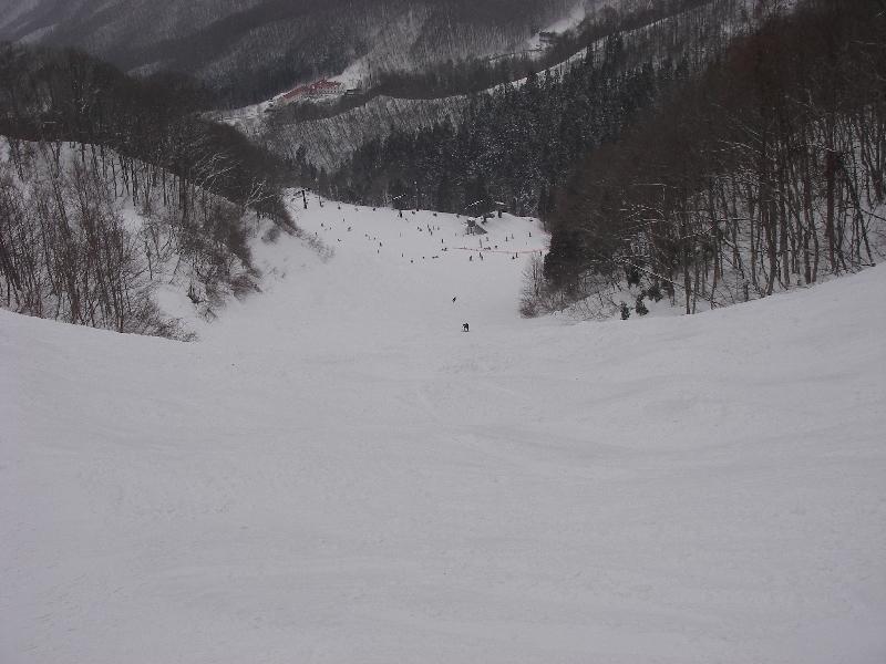 11日12日にスキーに行ってきました。_a0074069_21411347.jpg