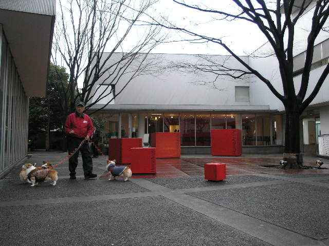 homearchiのプレゼンテーション in tokyo daikanyama_d0027290_4542659.jpg