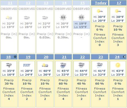 昨日は大雪、今日は大寒、でも春はもうすぐ_b0007805_16375128.jpg