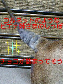 f0110234_11141723.jpg