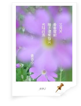 d0017557_1553067.jpg