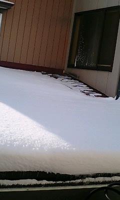 雪_e0036457_95378.jpg