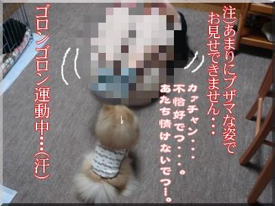 b0078073_23415881.jpg