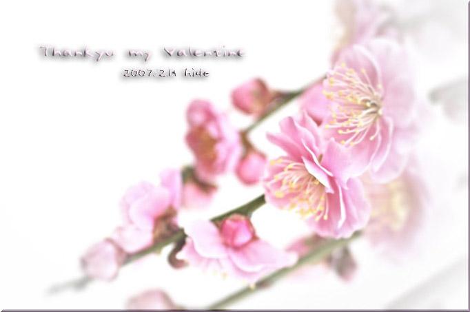 c0095342_13113860.jpg