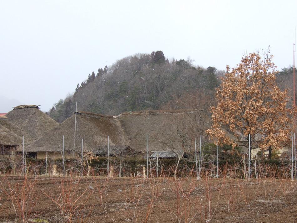 小雪ちらつく中、伝承園 + 昨日のカッパ淵_d0001843_14275166.jpg