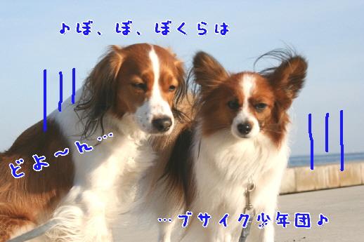 d0013149_0244523.jpg