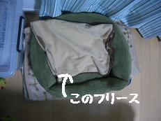 b0098660_2163831.jpg