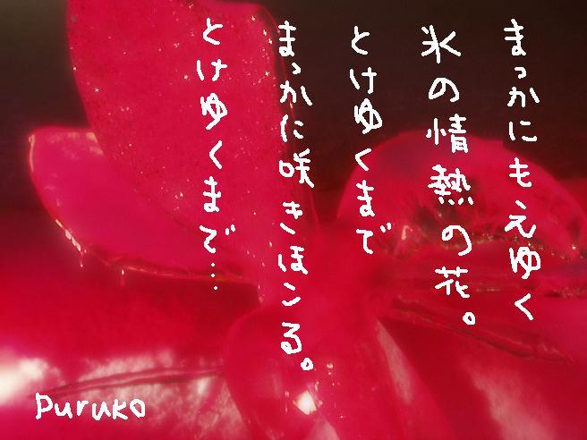 f0116384_22193555.jpg